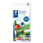 Crayon de couleur Design Journey étui de 12 pcs